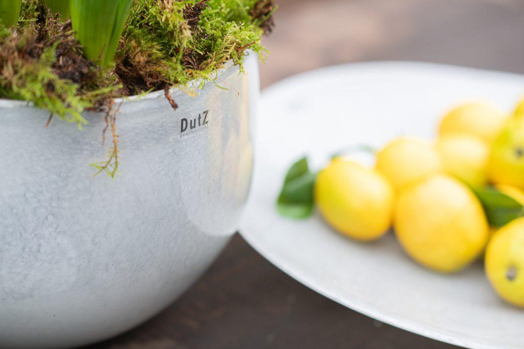 Glas Bowl und platte in weiss